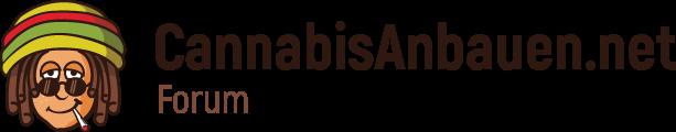 Forum | Cannabisanbauen.net